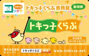 【確定】トキっ子くらぶ会員証2016_表