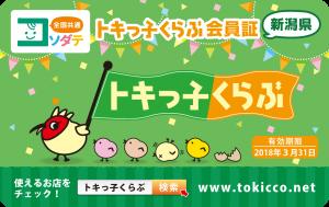 【確定】トキっ子くらぶ会員証2017_表