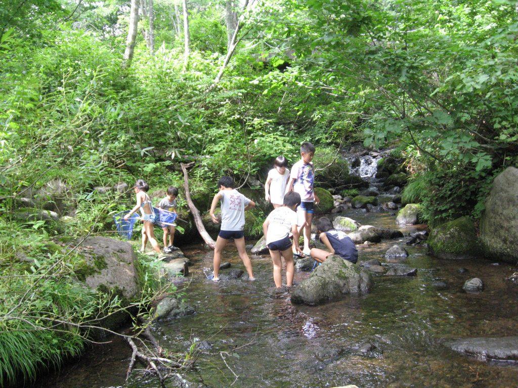 ②夏の思い出作り♪~森の中を大冒険~