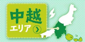 aria-chuetsu