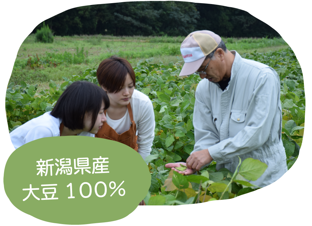 20190201豆撰様アイキャッチ1