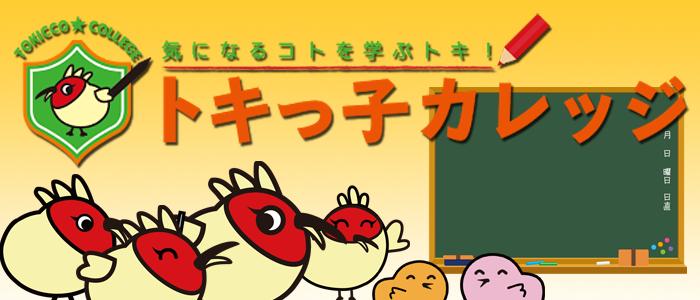 トキっ子カレッジメインイメージ