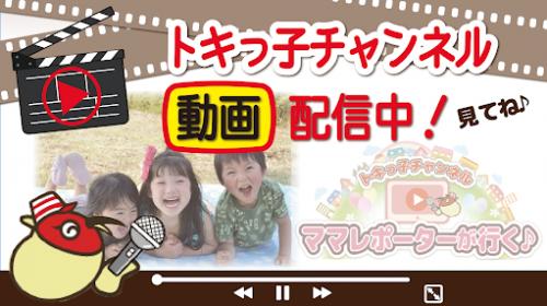 トキっ子チャンネル動画配信中!見てね♪③