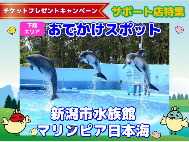 チケットプレゼントキャンペーンマリンピア日本海 (1)