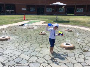 トキっ子夏のおすすめスポット大潟水と森公園