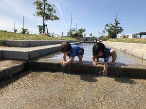 夏のおすすめスポット横越公園