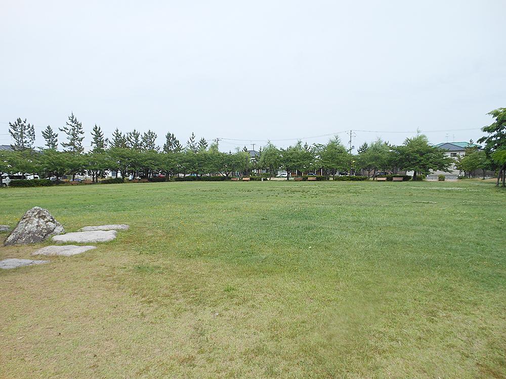 牛海道中央公園_芝生