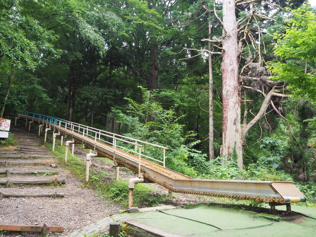 トキっ子スタッフ調査隊加茂山公園スライダー