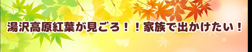 湯沢高原紅葉が見ごろ!家族で出かけたい!!