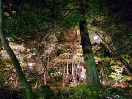 トキっ子秋のおすすめスポット松雪荘