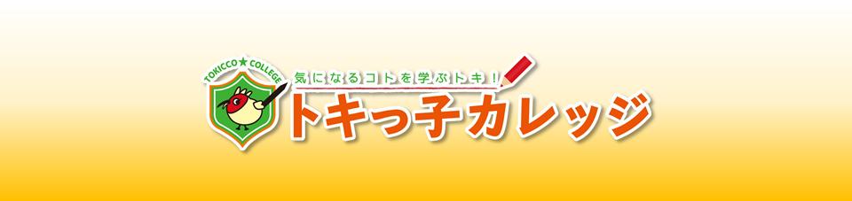 テンプレ_header_pc:トキカレ
