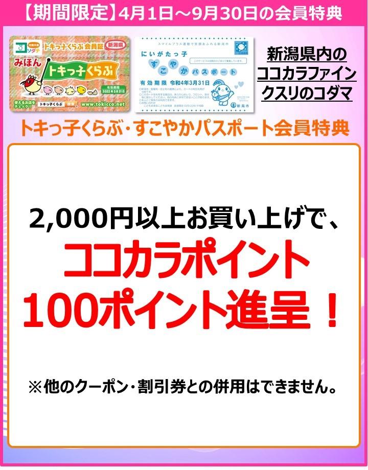 【修正】POP:A4_ココカラファイン様:20210401_20220331