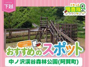 トキっ子調査隊中ノ沢渓谷森林公園(阿賀町)