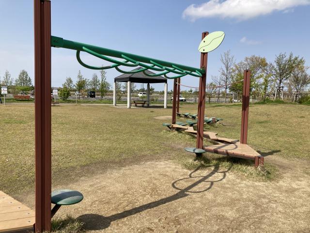 みどりと森の運動公園(遊具)7