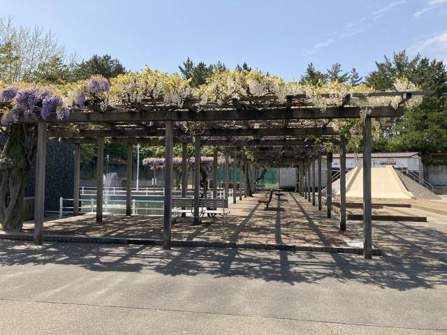 青山水道遊園7