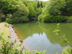 鮫ヶ尾城跡池