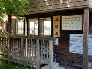 鳥屋野潟公園28