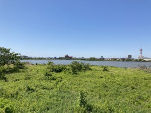 鳥屋野潟公園33
