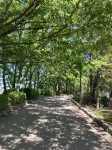 鳥屋野潟公園2