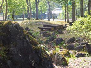 大湯公園ロックガーデン2