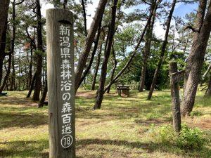 大潟シーサイドアスレチック新潟県森林浴の森