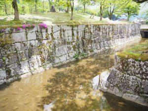 銭淵公園お堀 (2)