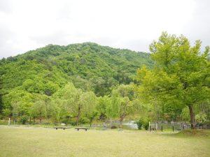 銭淵公園1