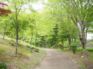 銭淵公園3