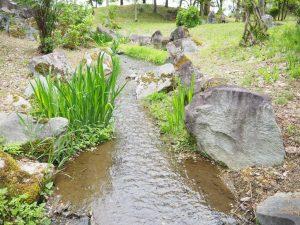 銭淵公園4