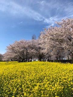 上堰潟公園 風景 (1)