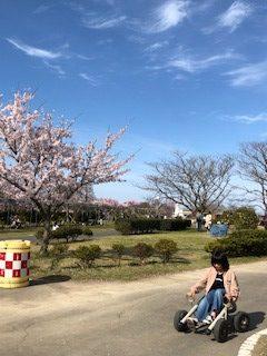 上堰潟公園 風景 (2)