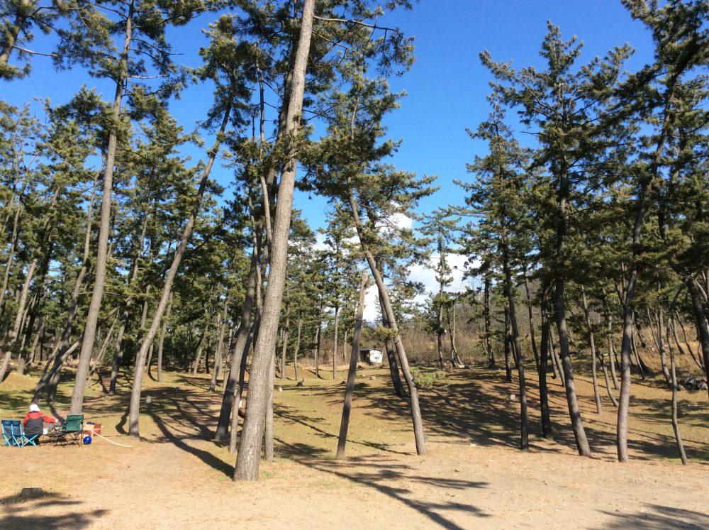 角田浜キャンプ場1
