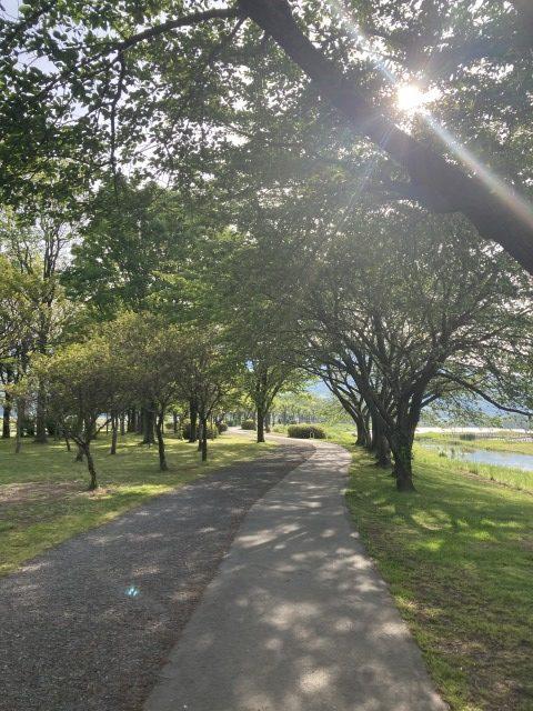 上堰潟公園25