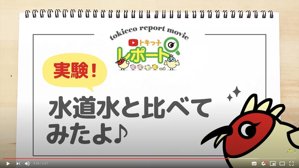 日本トリムトキっ子調査隊Movie2