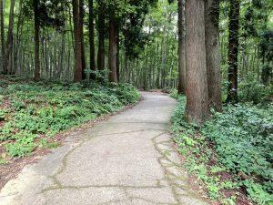美人林遊歩道