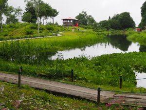 湯沢高原12