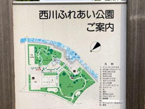 西川ふれあい公園案内図