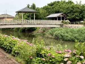 西川ふれあい公園8